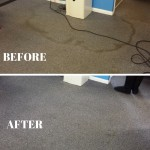 Stain Removal Commercial carpet cleaning spills, stains can be successfully removed.